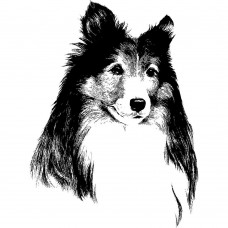Dog Animal black White Graphics Design-JY03