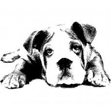 Dog Animal black White Graphics Design-JY04