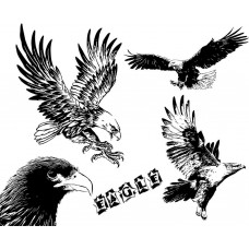 EAGLE black White Graphics Design-JY02
