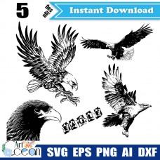 Eagle svg,eagle head svg,eagle clipart vector cricut silhouette cut file png dxf-JY02