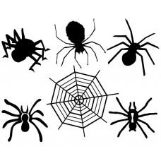 Halloween spider black White Graphics Design-JY07