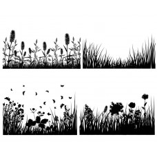 Flowers and plants grass black White Graphics Design-JY23