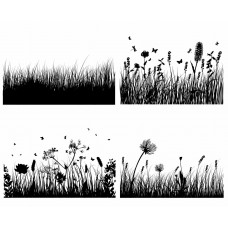 Flowers and plants grass black White Graphics Design-JY24