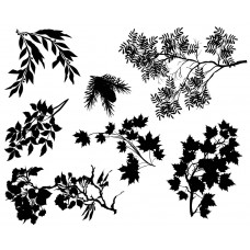 Tree Leaves and branches black White Graphics Design-JY25