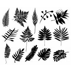 Leaf plants Tree black White Graphics Design-JY28