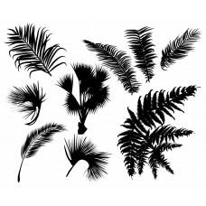 Leaf Tree black White Graphics Design-JY36
