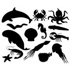 Ocean Animal Dolphin octopus Jellyfish shell shrimp Crab black White Graphics Design-JY42